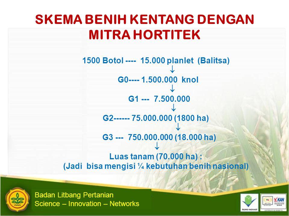 SKEMA BENIH KENTANG DENGAN MITRA HORTITEK 1500 Botol ---- 15.000 planlet (Balitsa)  G0---- 1.500.000 knol  G1 --- 7.500.000  G2------ 75.000.000 (1