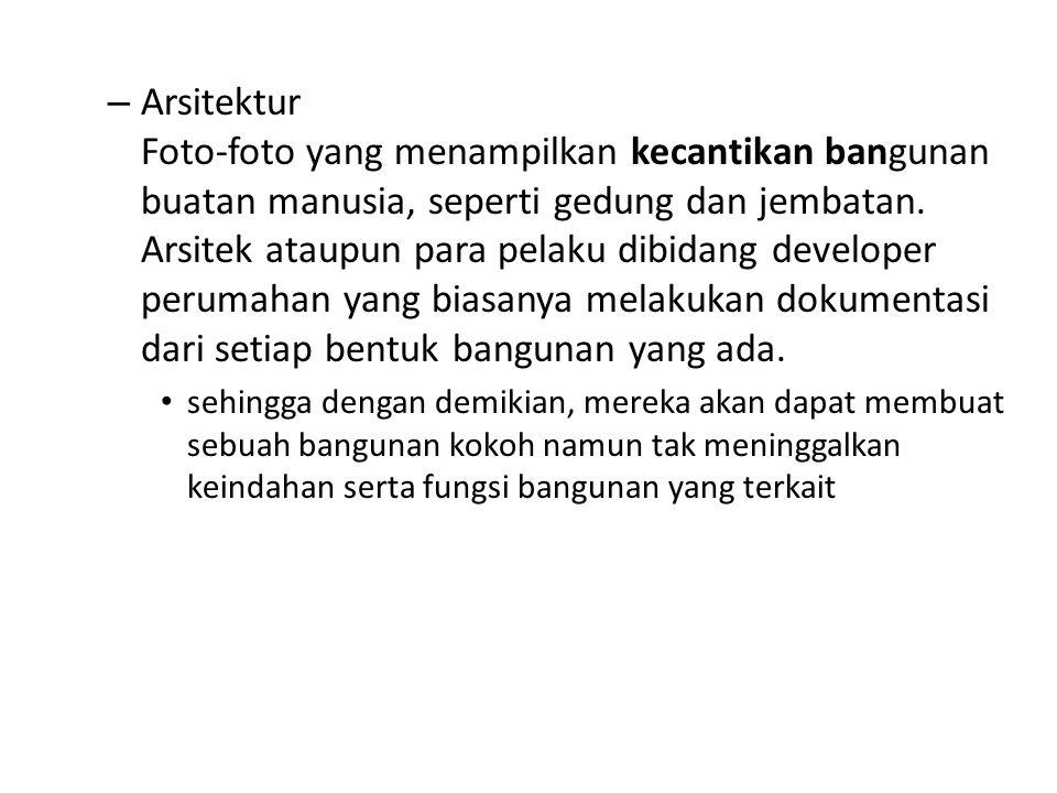 – Arsitektur Foto-foto yang menampilkan kecantikan bangunan buatan manusia, seperti gedung dan jembatan.