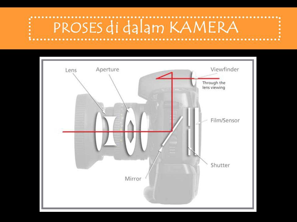 Lensa Wide-Angle/ Sudut Lebar Lensa Normal/ Standar Lensa Tele 3 Jenis LENSA