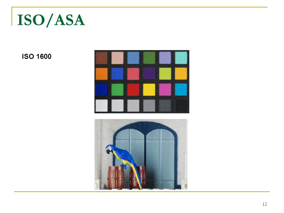 12 ISO 1600 ISO/ASA