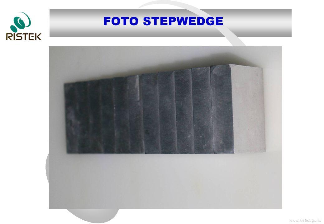 www.ristek.go.id FOTO STEPWEDGE