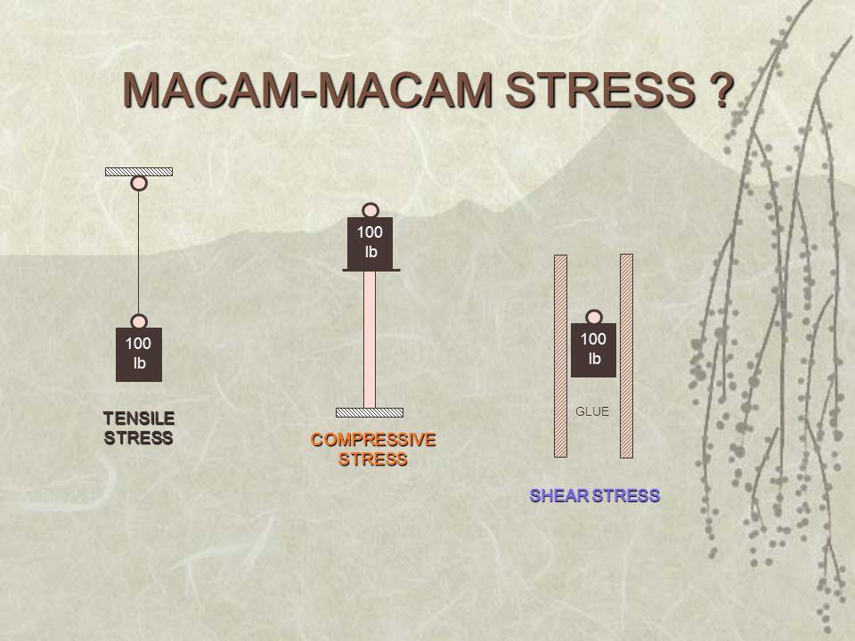 100 lb TENSILE STRESS 100 lb COMPRESSIVE STRESS 100 lb GLUE SHEAR STRESS MACAM-MACAM STRESS