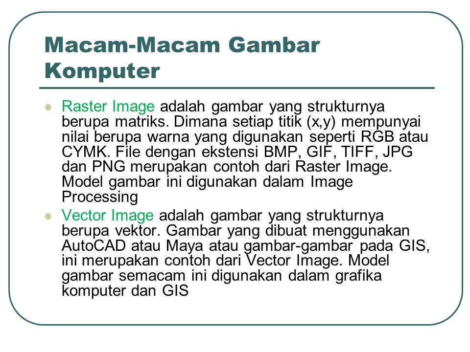 Macam-Macam Gambar Komputer  Raster Image adalah gambar yang strukturnya berupa matriks.
