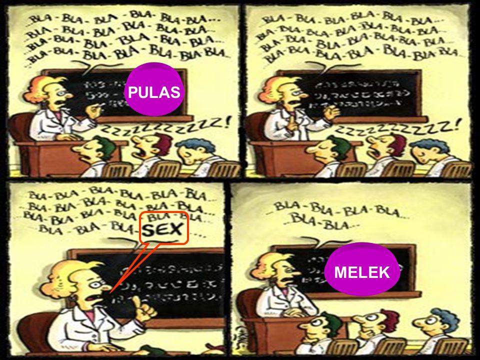 PULAS MELEK