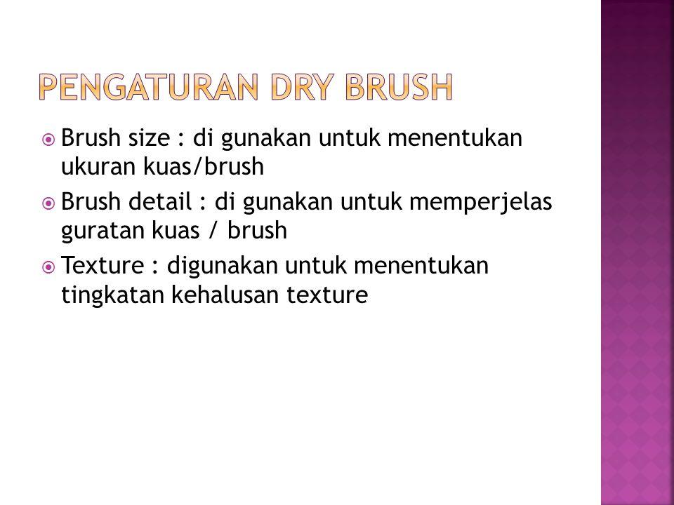  Brush size : di gunakan untuk menentukan ukuran kuas/brush  Brush detail : di gunakan untuk memperjelas guratan kuas / brush  Texture : digunakan