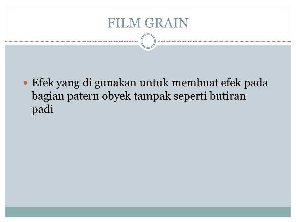 FILM GRAIN  Efek yang di gunakan untuk membuat efek pada bagian patern obyek tampak seperti butiran padi