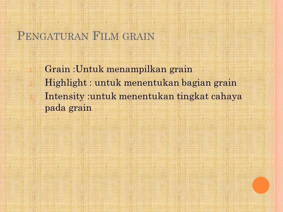 P ENGATURAN F ILM GRAIN 1. Grain :Untuk menampilkan grain 2. Highlight : untuk menentukan bagian grain 3. Intensity :untuk menentukan tingkat cahaya p