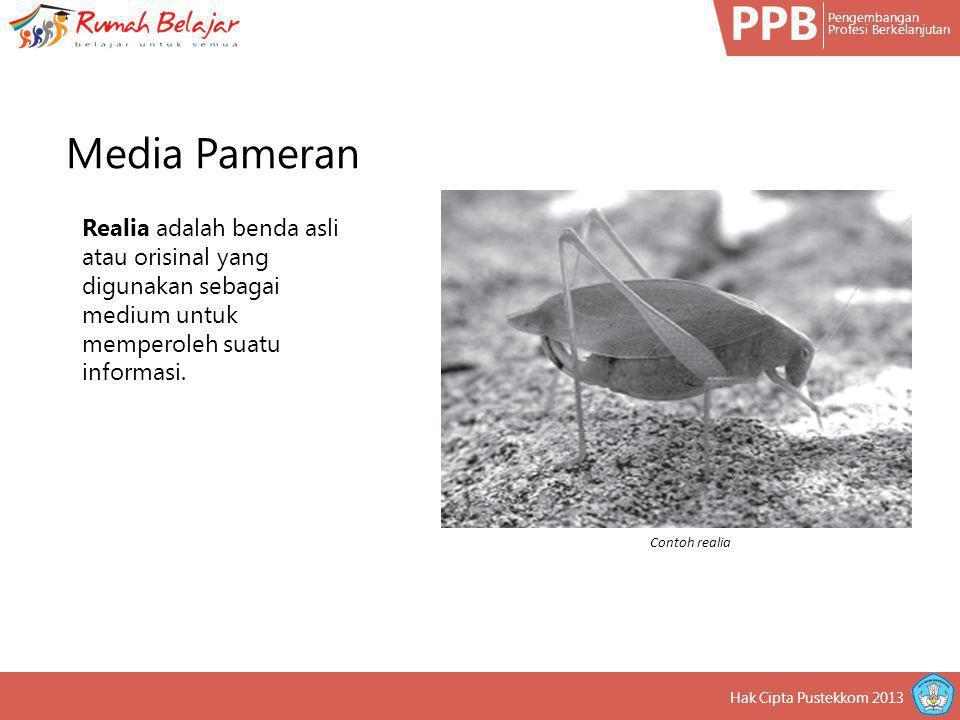 PPB Pengembangan Profesi Berkelanjutan Hak Cipta Pustekkom 2013 Realia adalah benda asli atau orisinal yang digunakan sebagai medium untuk memperoleh