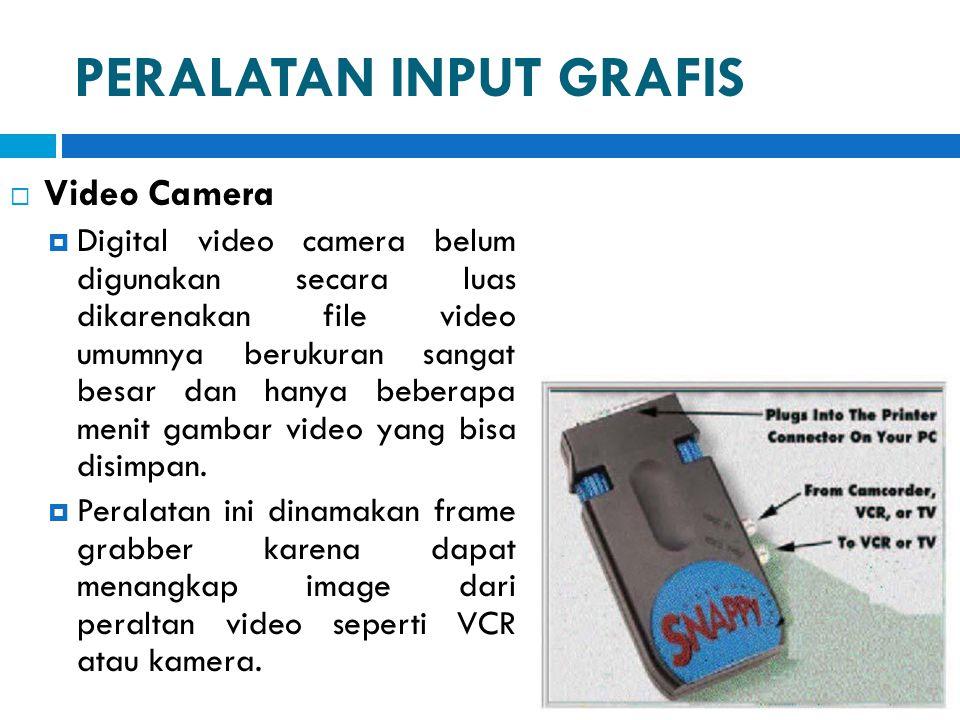 PERALATAN INPUT GRAFIS  Video Camera  Digital video camera belum digunakan secara luas dikarenakan file video umumnya berukuran sangat besar dan han
