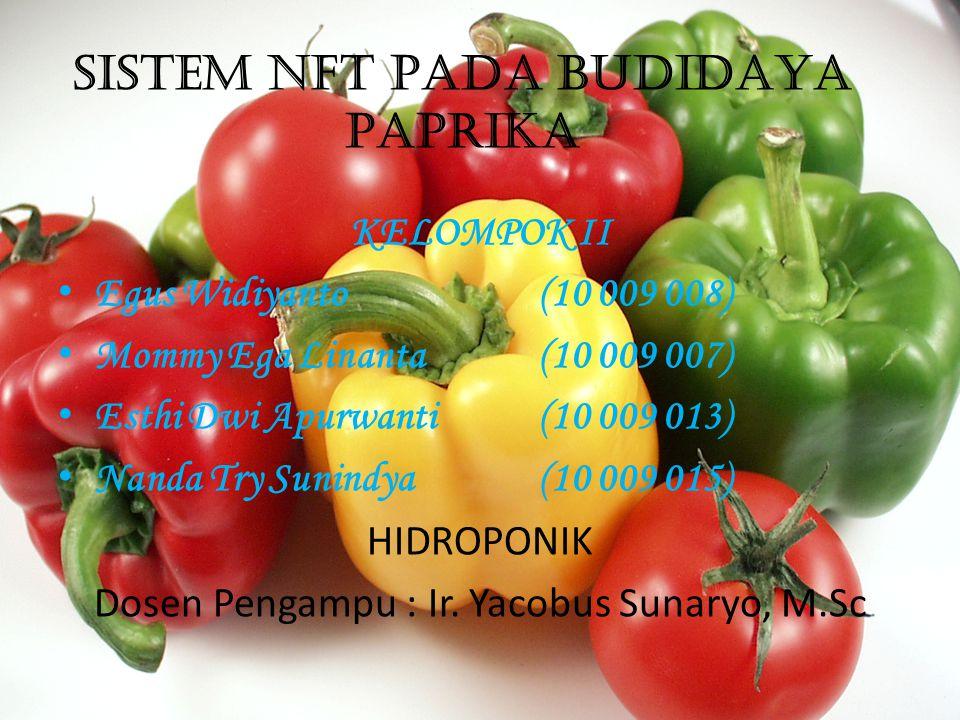 SISTEM NFT PADA BUDIDAYA PAPRIKA KELOMPOK II • Egus Widiyanto(10 009 008) • Mommy Ega Linanta (10 009 007) • Esthi Dwi Apurwanti (10 009 013) • Nanda