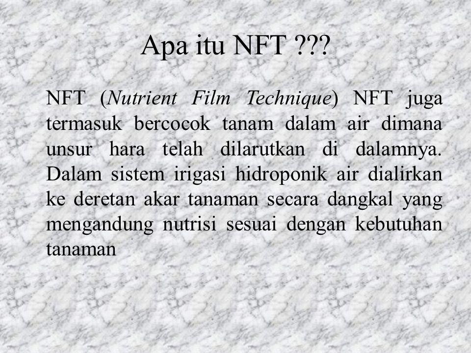 Apa itu NFT ??? NFT (Nutrient Film Technique) NFT juga termasuk bercocok tanam dalam air dimana unsur hara telah dilarutkan di dalamnya. Dalam sistem