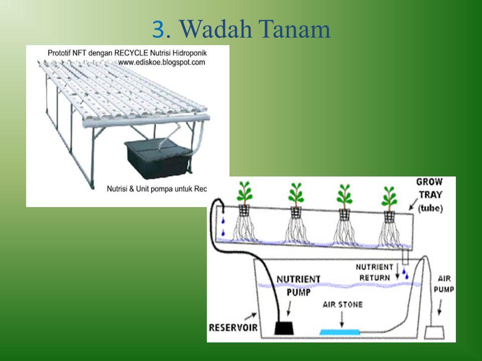 3. Wadah Tanam