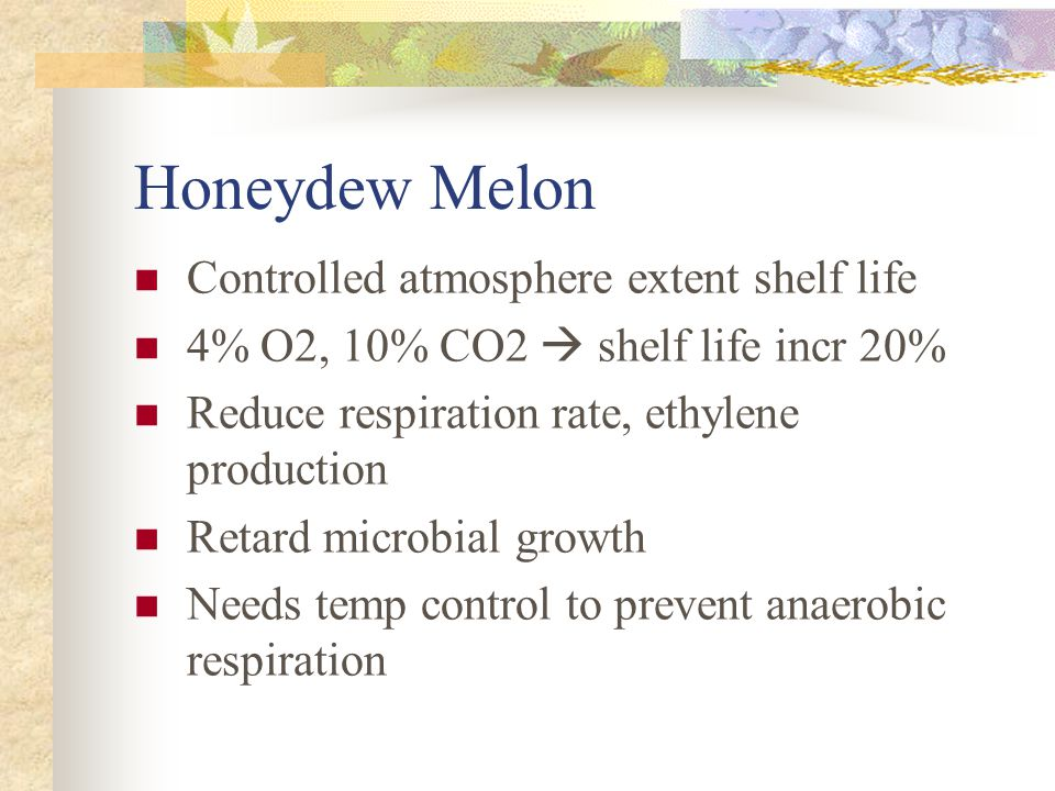 Honeydew Melon  Controlled atmosphere extent shelf life  4% O2, 10% CO2  shelf life incr 20%  Reduce respiration rate, ethylene production  Retard microbial growth  Needs temp control to prevent anaerobic respiration