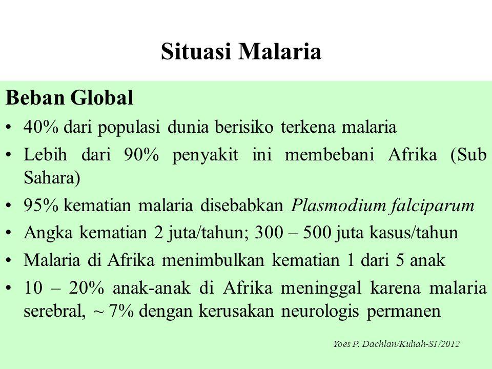 Situasi Malaria Beban Global •40% dari populasi dunia berisiko terkena malaria •Lebih dari 90% penyakit ini membebani Afrika (Sub Sahara) •95% kematia