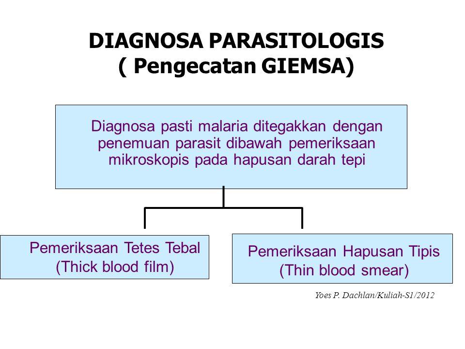 DIAGNOSA PARASITOLOGIS ( Pengecatan GIEMSA) Diagnosa pasti malaria ditegakkan dengan penemuan parasit dibawah pemeriksaan mikroskopis pada hapusan dar