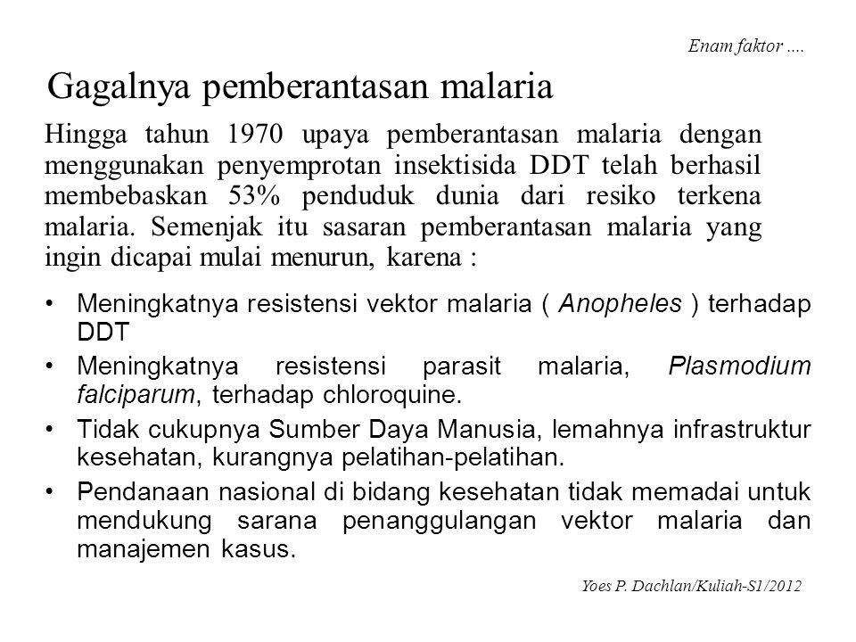 Gagalnya pemberantasan malaria • Meningkatnya resistensi vektor malaria ( Anopheles ) terhadap DDT • Meningkatnya resistensi parasit malaria, Plasmodi