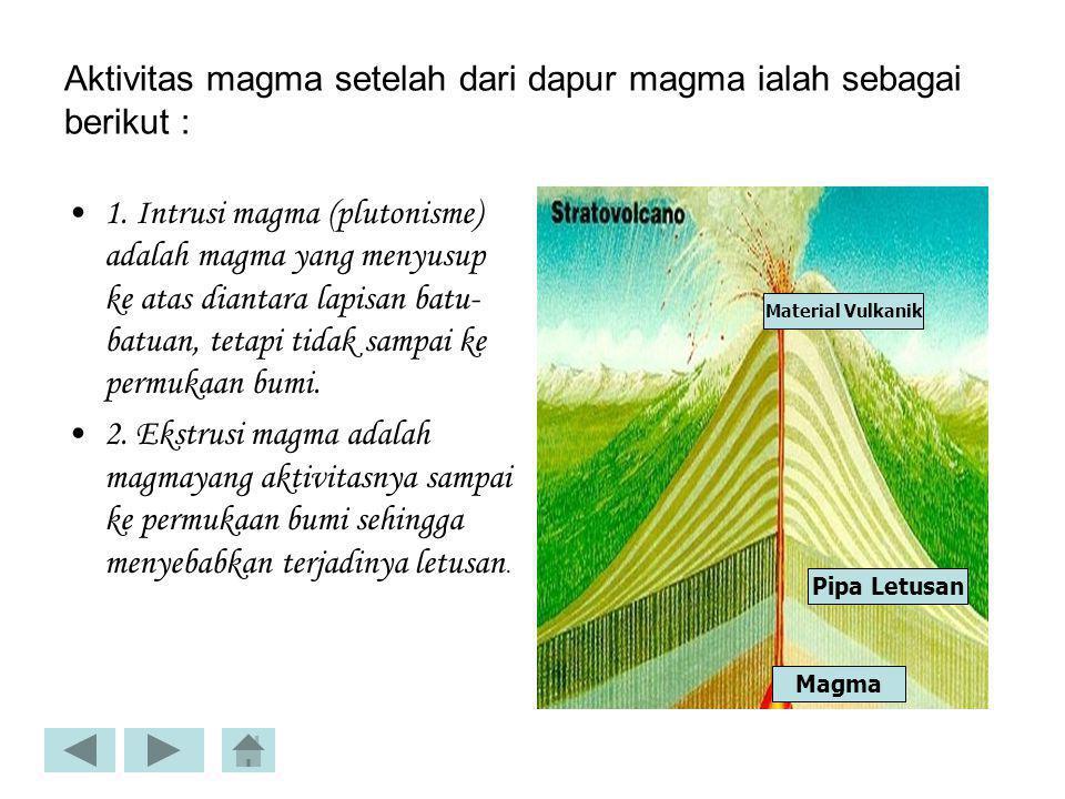 Hasil-hasil Tenaga Endogen A. Relief Daratan Pantai 1. Pantai adalah : batas antara daratan dan lautan 2. Dataran Tinggi :daerah dataran yang luas dik