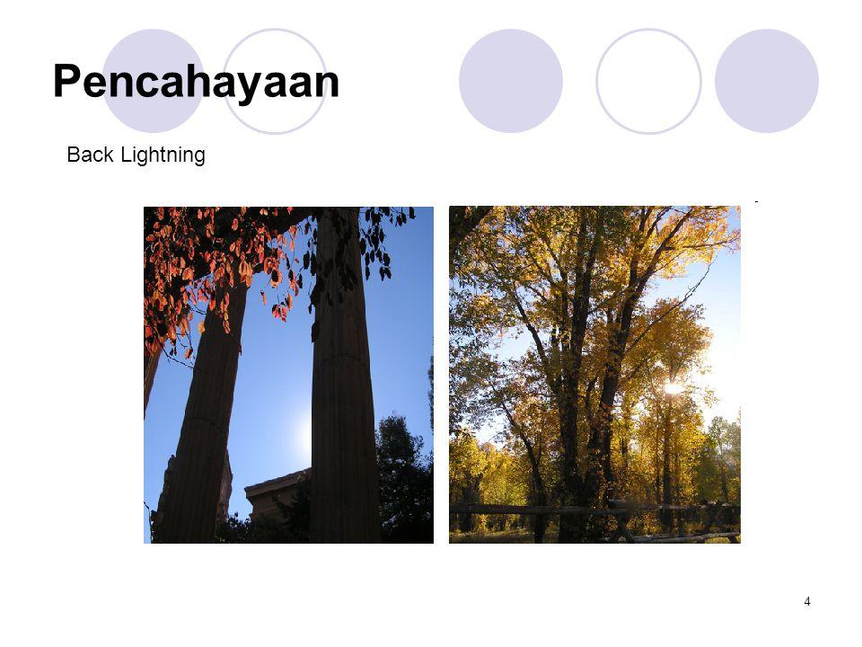 5 Pencahayaan Side Lightning Hair Lightning