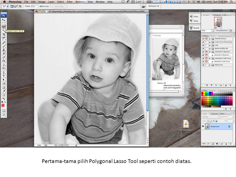 Pertama-tama pilih Polygonal Lasso Tool seperti contoh diatas.