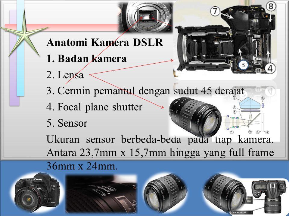 Anatomi Kamera DSLR 1. Badan kamera 2. Lensa 3. Cermin pemantul dengan sudut 45 derajat 4. Focal plane shutter 5. Sensor Ukuran sensor berbeda-beda pa