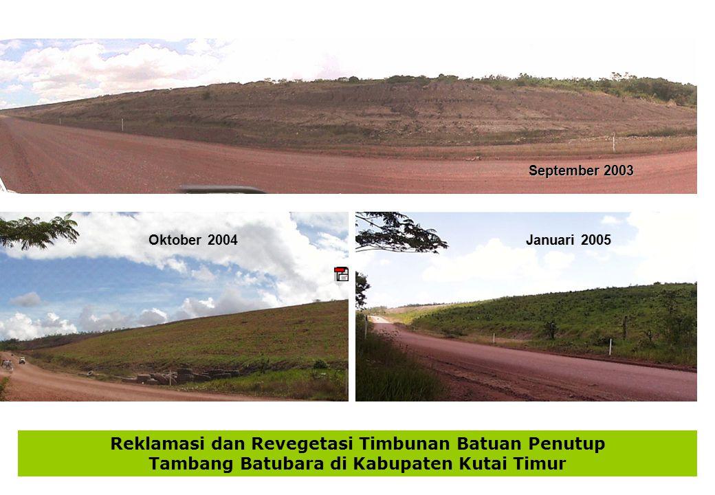 Reklamasi dan Revegetasi Timbunan Batuan Penutup Tambang Batubara di Kabupaten Kutai Timur September 2003 Oktober 2004 Januari 2005
