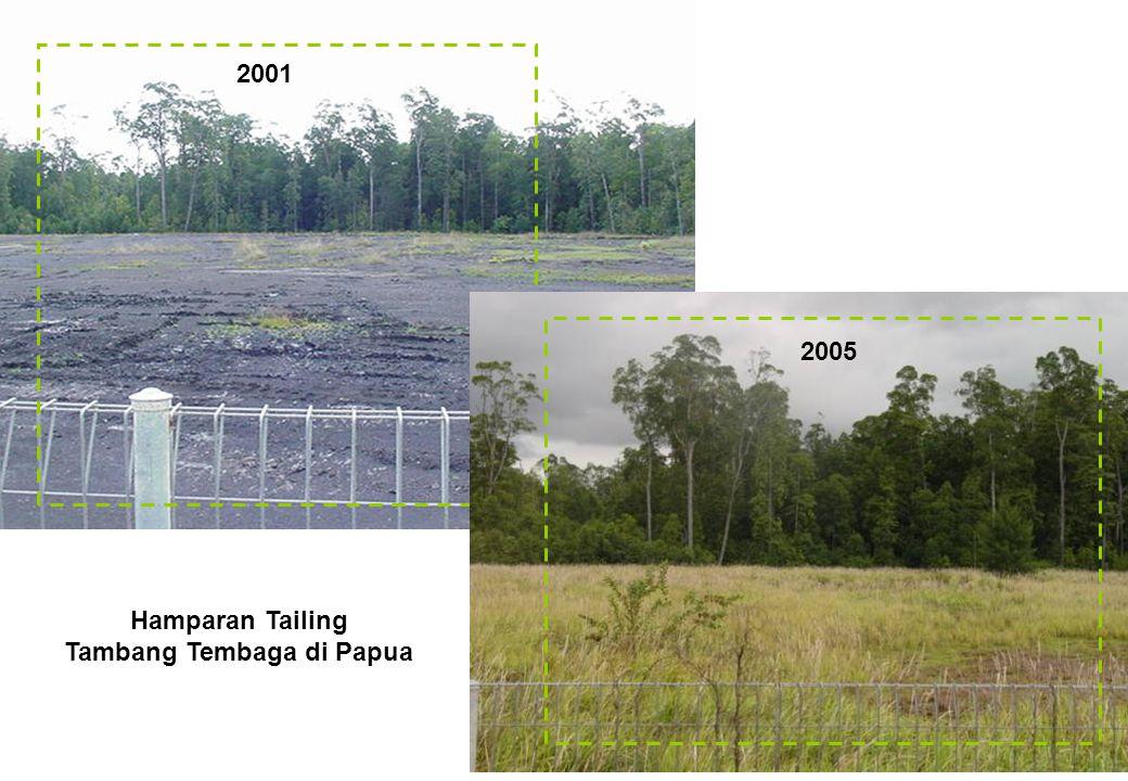 2001 2005 Hamparan Tailing Tambang Tembaga di Papua