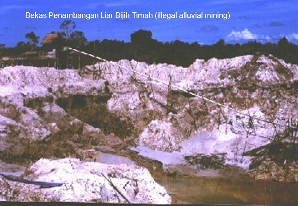 Bekas Penambangan Liar Bijih Timah (illegal alluvial mining)