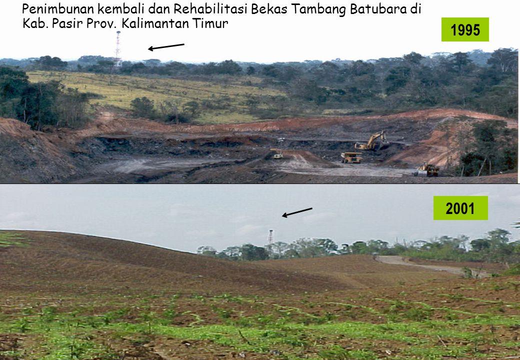 1995 Penimbunan kembali dan Rehabilitasi Bekas Tambang Batubara di Kab. Pasir Prov. Kalimantan Timur 2001