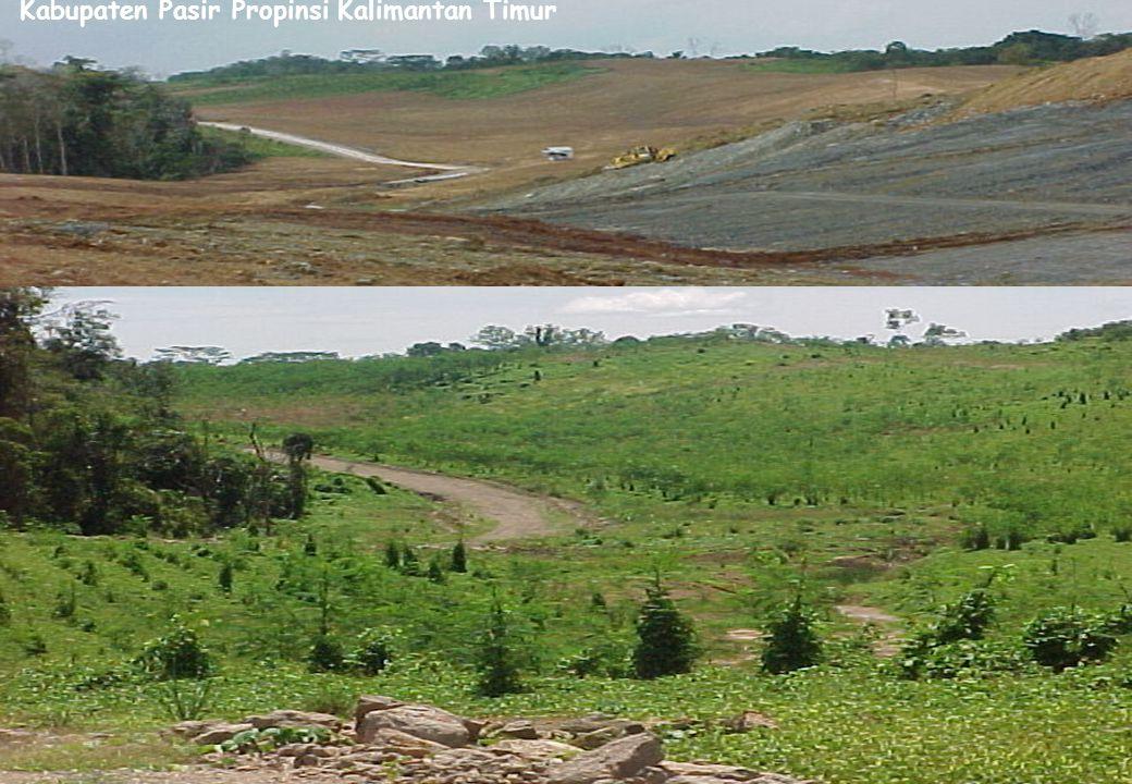 Rehabilitasi Bekas Tambang Batubara di Kabupaten Pasir Propinsi Kalimantan Timur