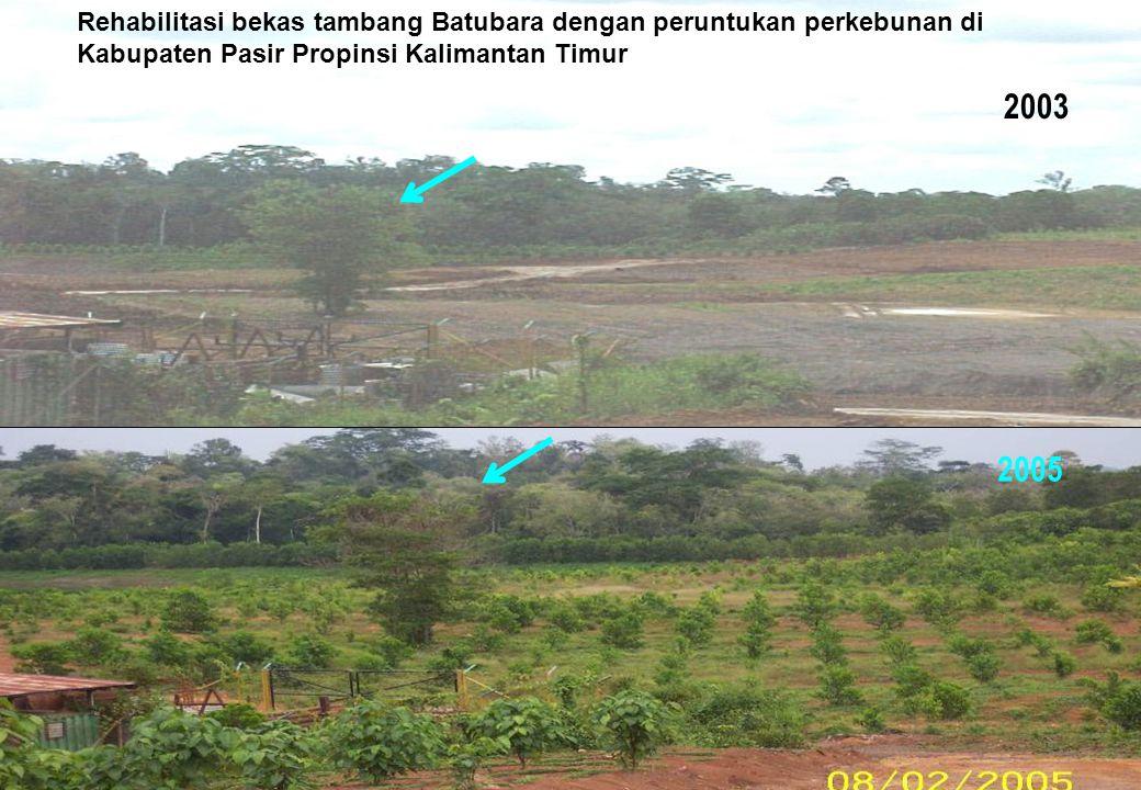 Kegiatan PETI (Pertambangan Emas Tanpa Izin-Illegal Mining)
