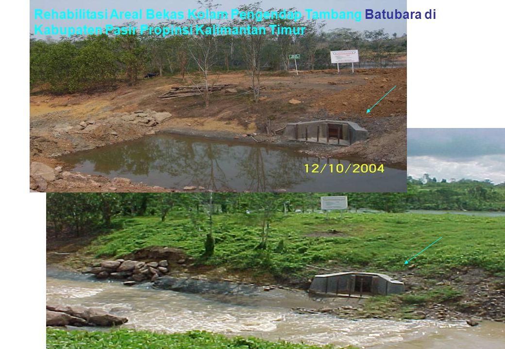 Rehabilitasi Areal Bekas Kolam Pengendap Tambang Batubara di Kabupaten Pasir Propinsi Kalimantan Timur
