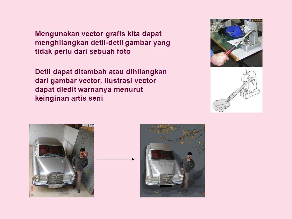 Mengunakan vector grafis kita dapat menghilangkan detil-detil gambar yang tidak perlu dari sebuah foto Detil dapat ditambah atau dihilangkan dari gamb