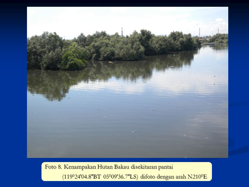 Foto 8. Kenampakan Hutan Bakau disekitaran pantai (119 0 24'04.8''BT 05 0 09'36.7''LS) difoto dengan arah N210 0 E