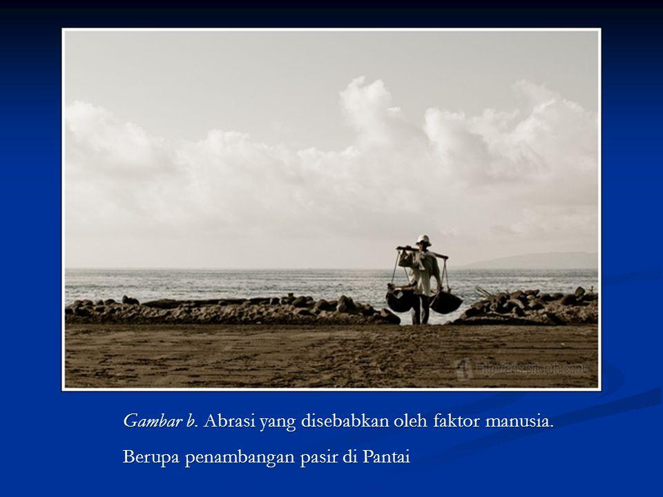 Gambar b. Abrasi yang disebabkan oleh faktor manusia. Berupa penambangan pasir di Pantai