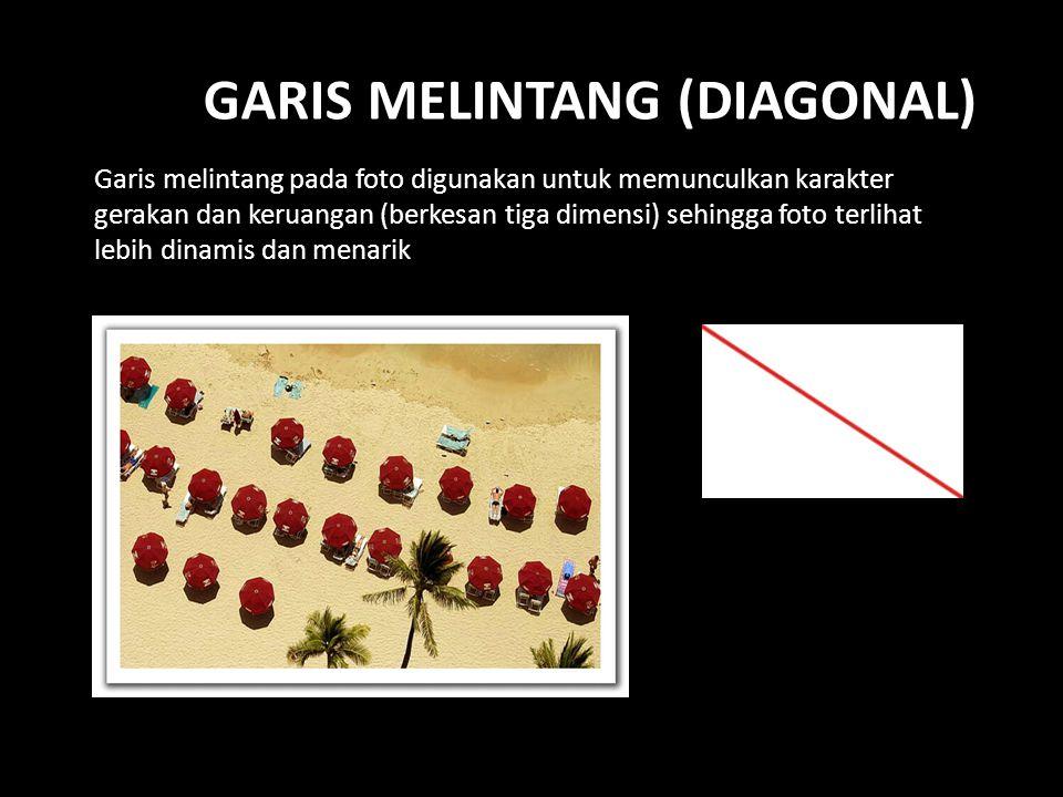 GARIS MELINTANG (DIAGONAL) Garis melintang pada foto digunakan untuk memunculkan karakter gerakan dan keruangan (berkesan tiga dimensi) sehingga foto terlihat lebih dinamis dan menarik