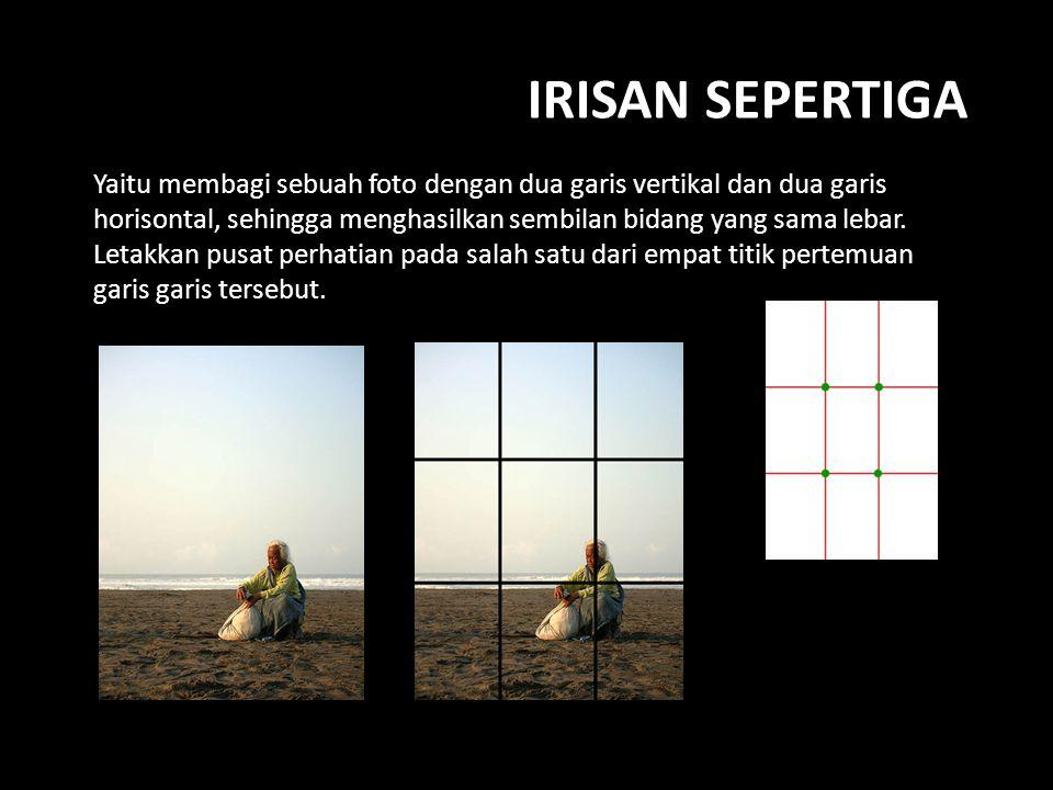 IRISAN SEPERTIGA Yaitu membagi sebuah foto dengan dua garis vertikal dan dua garis horisontal, sehingga menghasilkan sembilan bidang yang sama lebar.