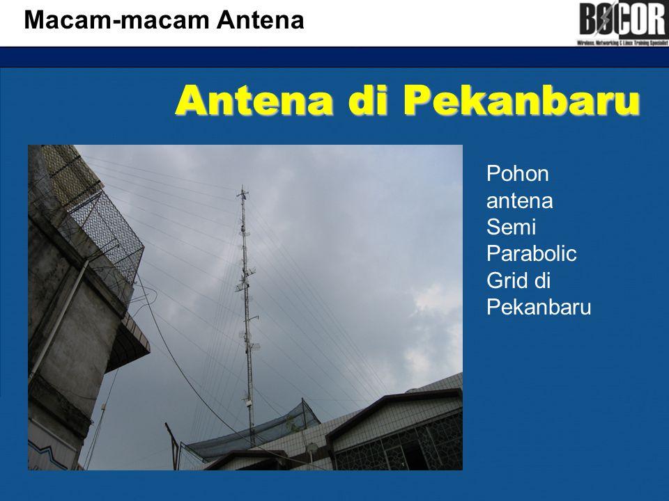 Antena di Pekanbaru Macam-macam Antena Pohon antena Semi Parabolic Grid di Pekanbaru