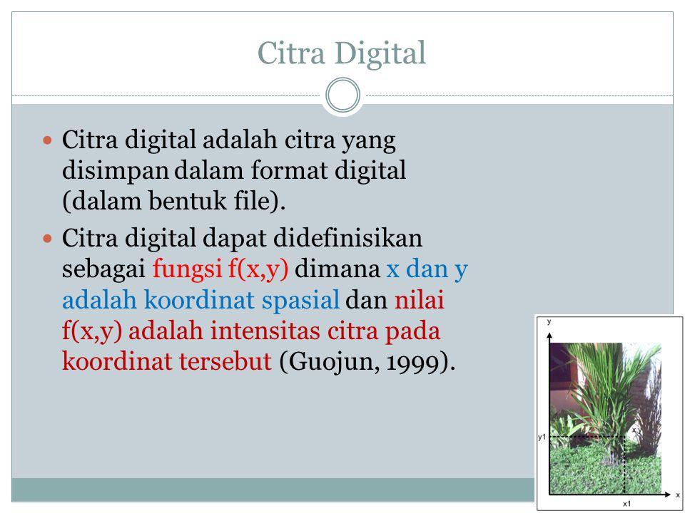 Citra Digital  Citra digital adalah citra yang disimpan dalam format digital (dalam bentuk file).  Citra digital dapat didefinisikan sebagai fungsi