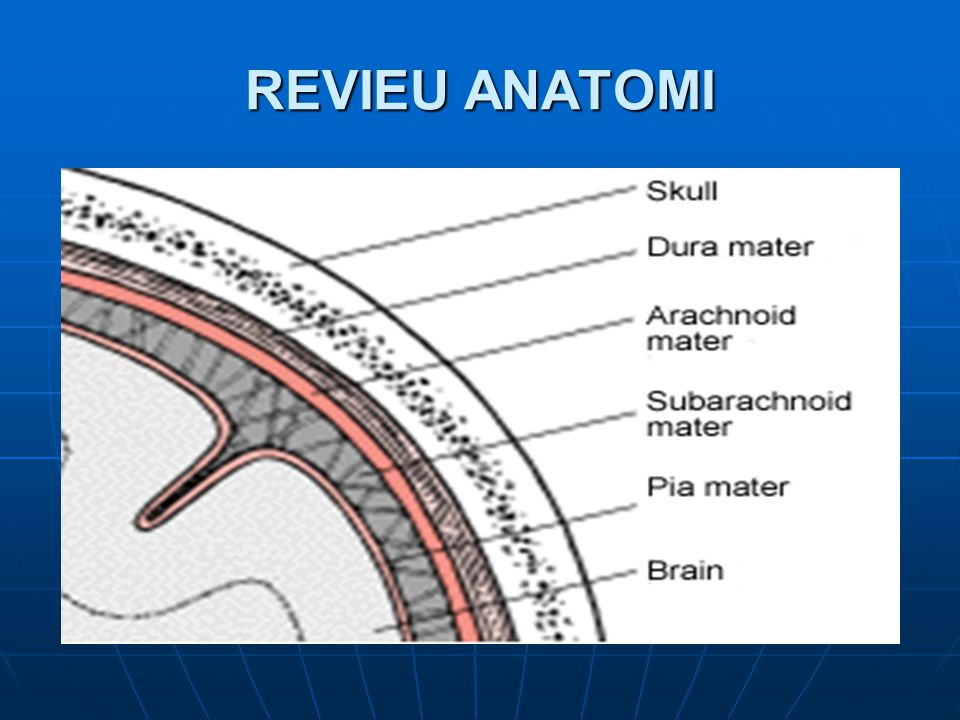 PENATALAKSANAAN CEDERA KEPALA  Tekanan Intra Kranial meninggi Terjadi akibat vasodilatasi, udem otak, hematom Untuk mengukurnya sebaiknya dipasang monitor TIK.