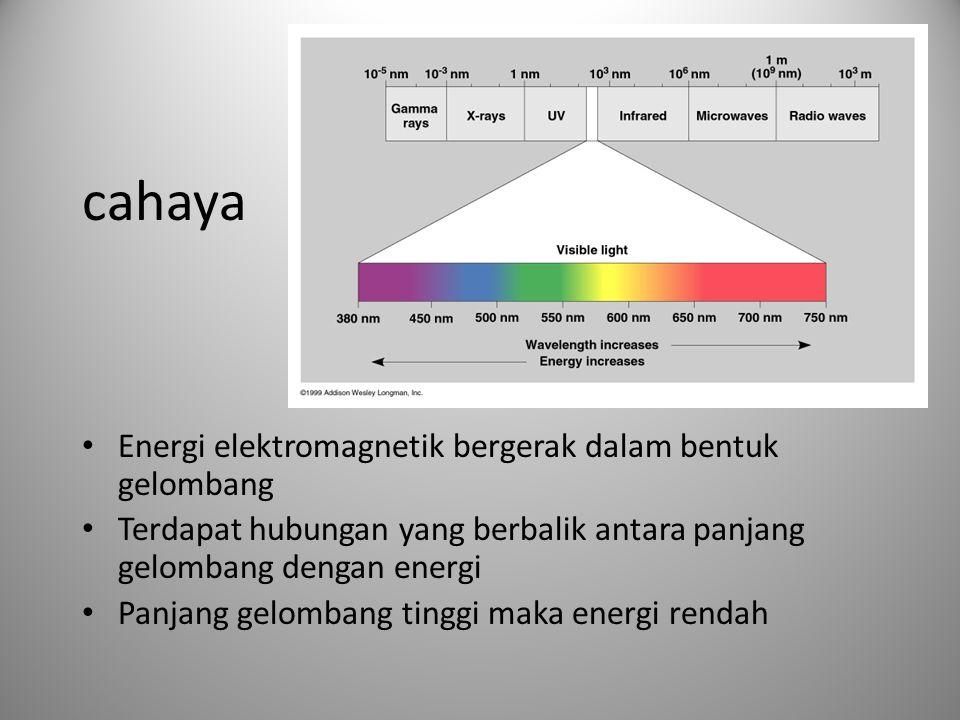 cahaya • Energi elektromagnetik bergerak dalam bentuk gelombang • Terdapat hubungan yang berbalik antara panjang gelombang dengan energi • Panjang gel
