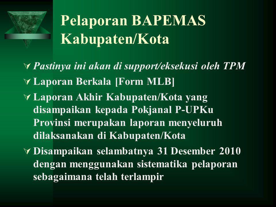 Pelaporan BAPEMAS Kabupaten/Kota  Pastinya ini akan di support/eksekusi oleh TPM  Laporan Berkala [Form MLB]  Laporan Akhir Kabupaten/Kota yang dis