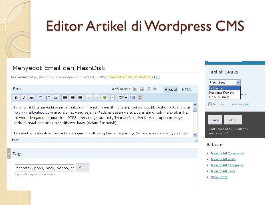 Editor Artikel di Wordpress CMS