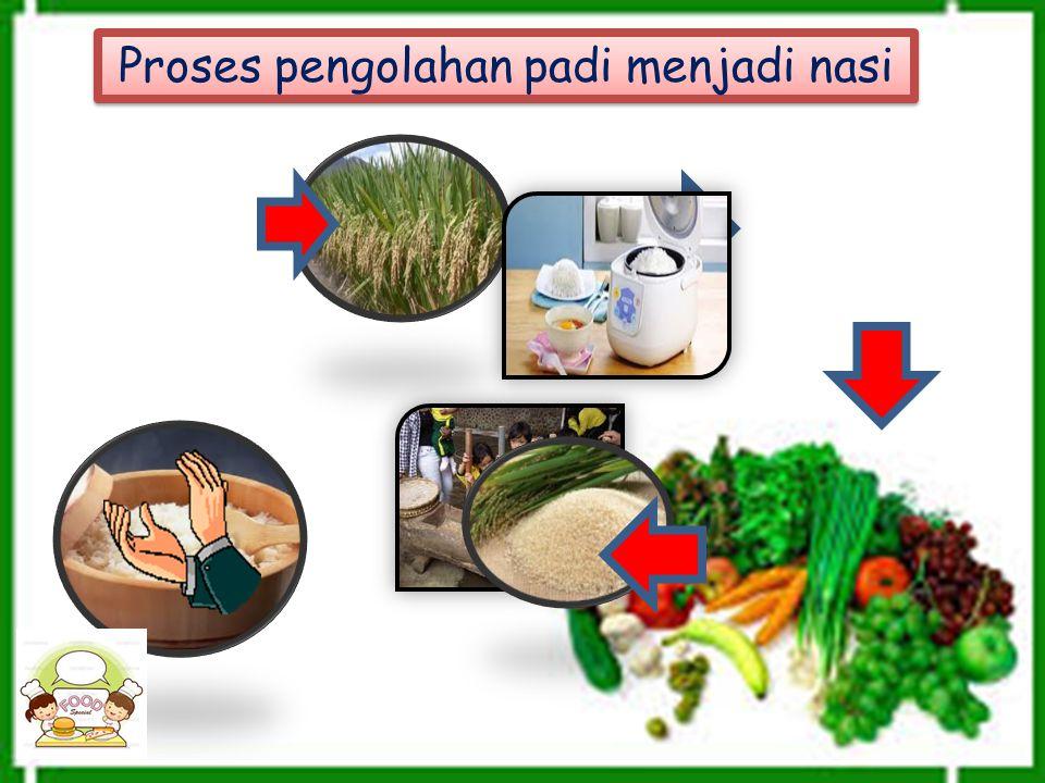 Proses pengolahan padi menjadi nasi Proses pengolahan padi menjadi nasi