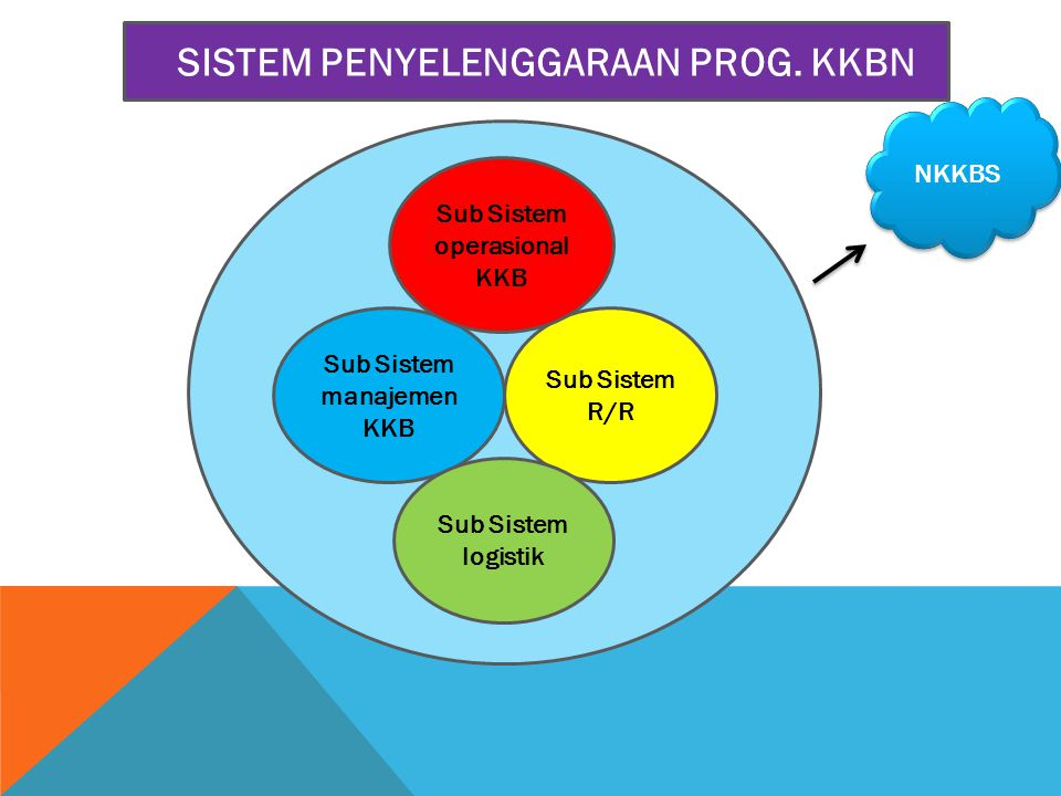 Sub Sistem manajemen KKB Sub Sistem R/R Sub Sistem operasional KKB SISTEM PENYELENGGARAAN PROG. KKBN Sub Sistem logistik NKKBS