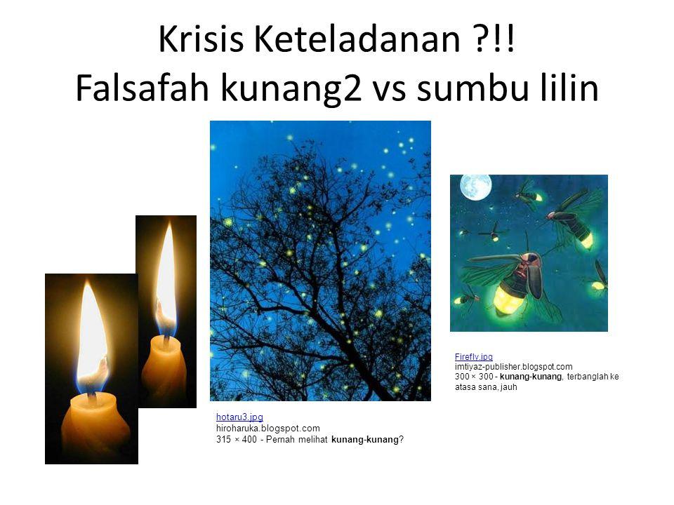 Krisis Keteladanan ?!! Falsafah kunang2 vs sumbu lilin Firefly.jpg imtiyaz-publisher.blogspot.com 300 × 300 - kunang-kunang, terbanglah ke atasa sana,