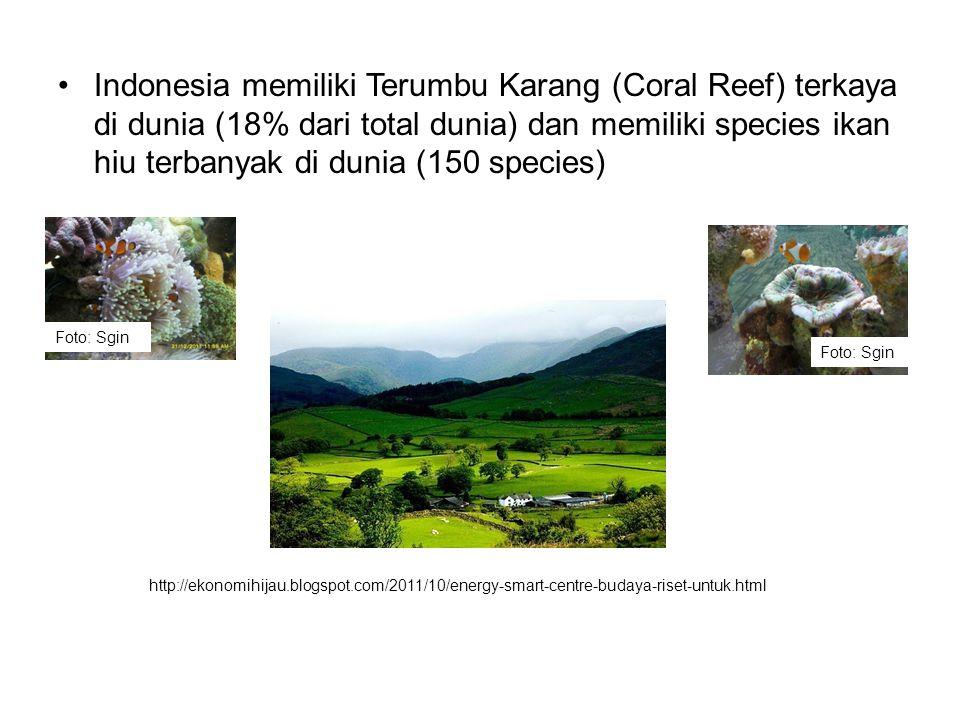•Indonesia memiliki Terumbu Karang (Coral Reef) terkaya di dunia (18% dari total dunia) dan memiliki species ikan hiu terbanyak di dunia (150 species)
