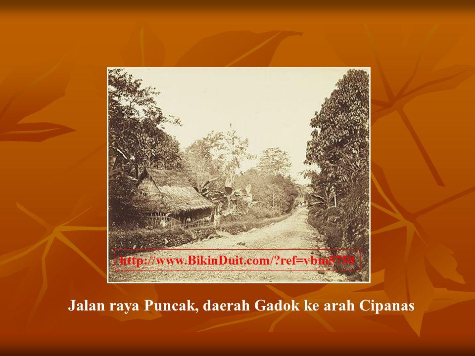 Jalan raya Puncak, daerah Gadok ke arah Cipanas http://www.BikinDuit.com/?ref=vbm5758
