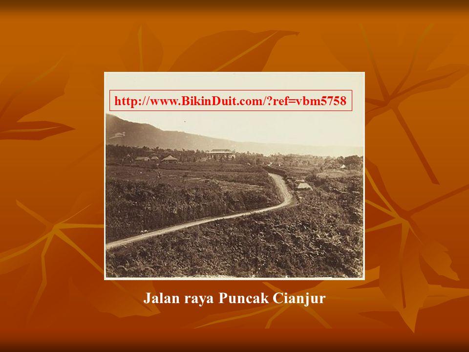 Jalan raya Puncak Cianjur http://www.BikinDuit.com/?ref=vbm5758
