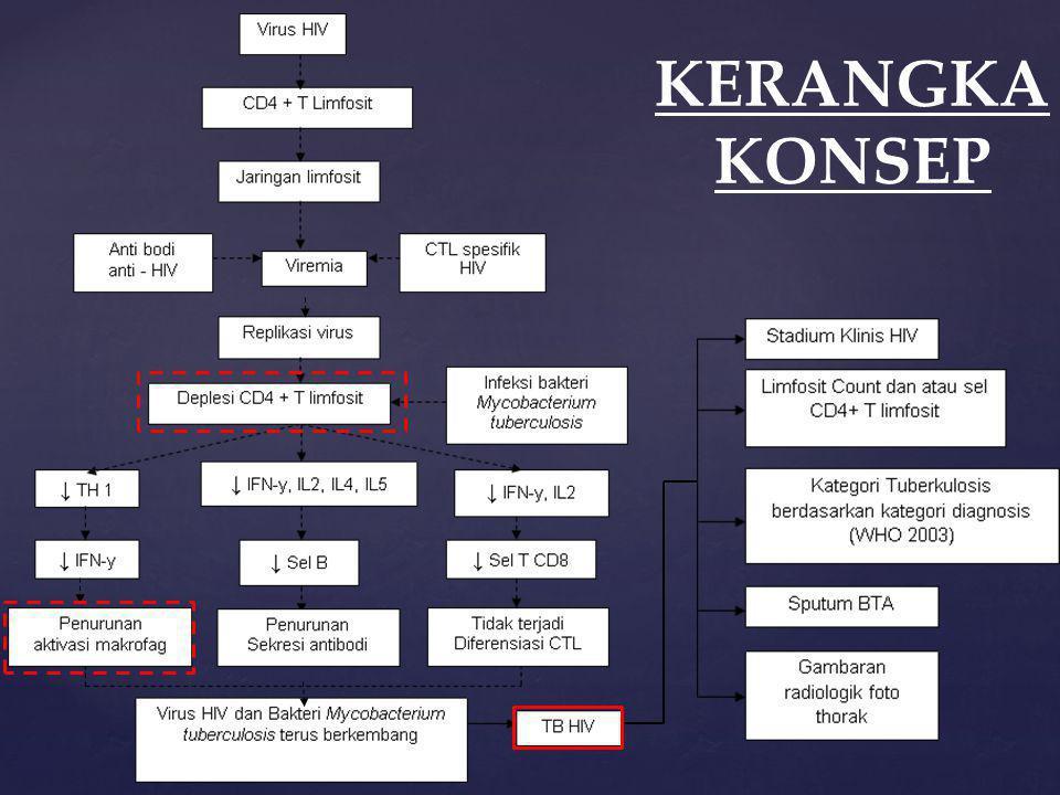 KERANGKA KONSEP