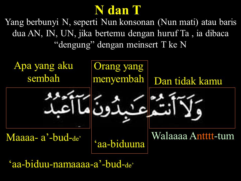 Yang berbunyi N, seperti Nun konsonan (Nun mati) atau baris dua AN, IN, UN, jika bertemu dengan huruf Ta, ia dibaca dengung dengan meinsert T ke N N dan T Walaaaa Antttt-tum Dan tidak kamu 'aa-biduuna Orang yang menyembah Apa yang aku sembah Maaaa- a'-bud- de' 'aa-biduu-namaaaa-a'-bud- de'